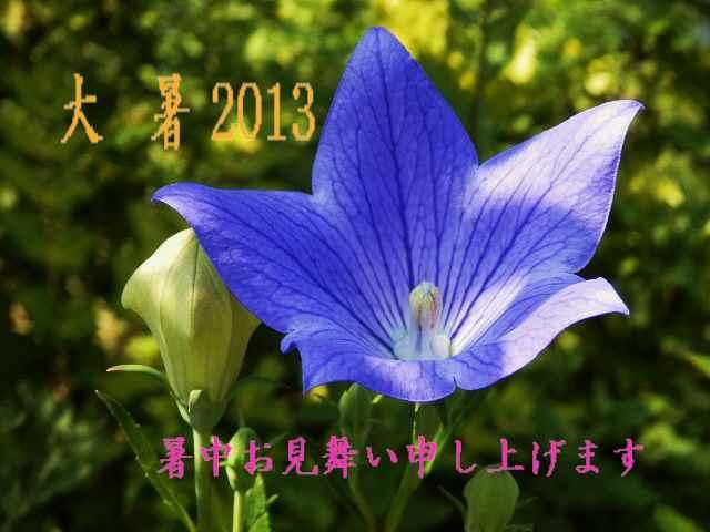 花 005 - コピー